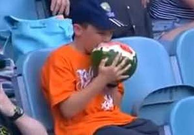 クリケットの試合中にスイカを丸齧りする謎の少年が話題に!! | コモンポストムービー