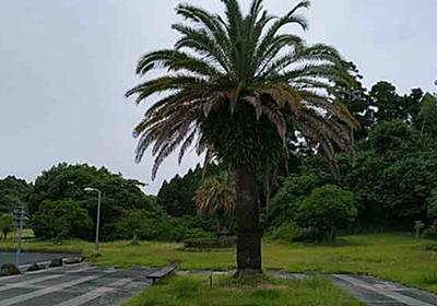 延岡市は大分県ではない - 安くて、安全で、快適な家を 作りたい