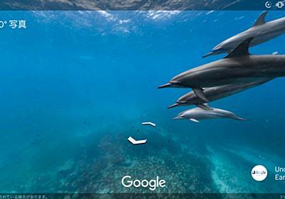 【楽しい】Googleの水中ストリートビューがいつの間にか超絶パワーアップしていてヤバい! 人や車のかわりに海ガメやイルカとすれ違う不思議な感覚