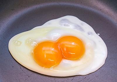 黄身が2個入ってて濃厚──双子の玉子「二黄卵」を知ってますか? - メシ通 | ホットペッパーグルメ