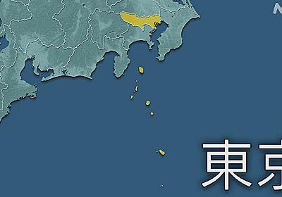 東京 小笠原村で初 2人の感染確認 対応病床なく都内に搬送へ | 新型コロナ 国内感染者数 | NHKニュース