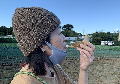 「キジバト笛」を作ってハト本人と共演したい :: デイリーポータルZ