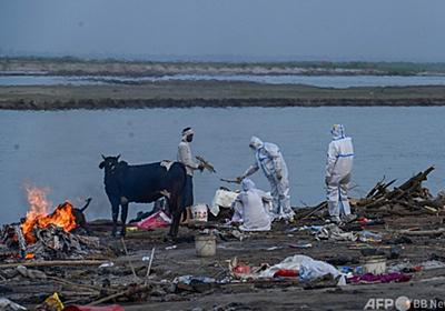 ガンジス川岸に遺体数十体漂着、コロナ犠牲者か インド 写真8枚 国際ニュース:AFPBB News