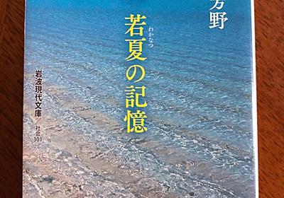もう沖縄なしでは難しいの〜[沖縄 若夏の記憶]を読んで思ったことは大石芳野著のフォトエッセイで沖縄の工芸や基地からウルトラマンの話題について考えました - ストレイバード はぐれ鳥の止まり木