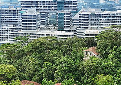 ザ・インターレース - Visit Singapore 公式サイト
