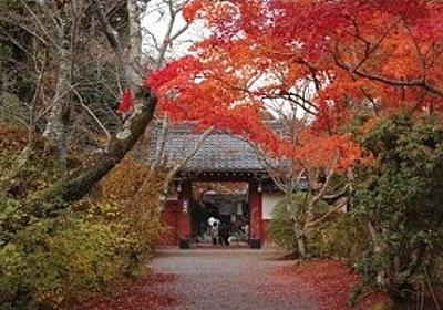 常照寺の紅葉2018、見ごろと混雑状況。 - 京都観光、一人旅