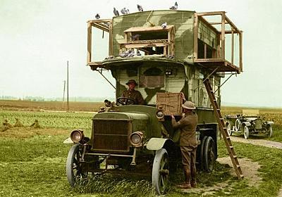 第一次世界大戦中に活躍したイギリスの軍鳩は二階建てのダブルデッカーバスを拠点としていた : カラパイア