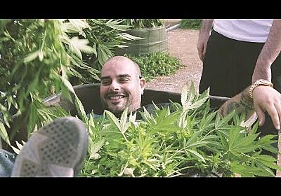 Marijuana Mania Episode 1 - YouTube