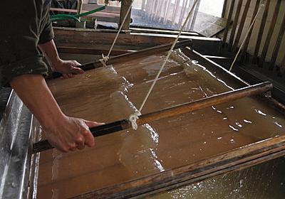 手すき和紙業界に大打撃 トロロアオイ農家が生産中止へ:朝日新聞デジタル