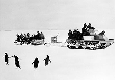 ペンギンの「性的堕落」に戦慄、100年前の南極探検隊員 英研究 写真1枚 国際ニュース:AFPBB News