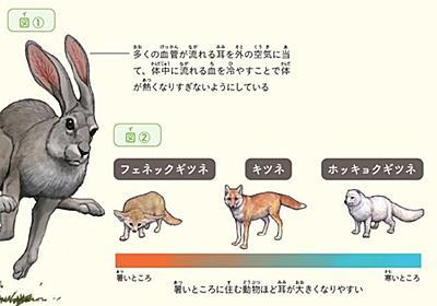 ウサギの耳はなぜ長い?動物人間で見るその凄さ | 読書