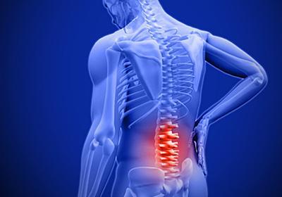 腰痛に効くヨガストレッチ - 時の化石