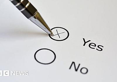 The risky business of the referendum - BBC News