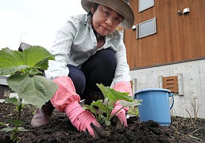 新型コロナ: 仕事の合間、畑で癒やし 農業×ワーケーション広がる: 日本経済新聞