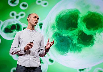 シェアせずにはいられない! TED 2017で聴いてきた「意識」と「AI」についてのトーク   WIRED.jp