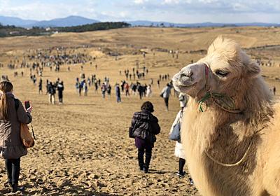 鳥取砂丘で「ポケモンGO」、初日1万5000人来場 「これほど人が集まった砂丘は見たことがない」 - ITmedia NEWS